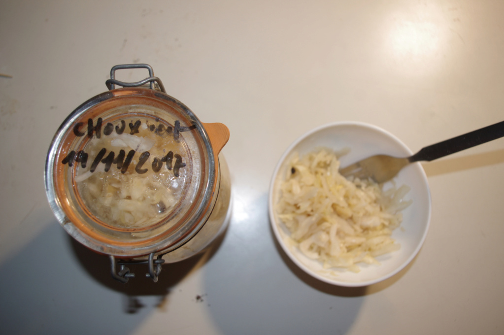 [alimentation] la lacto-fermentation Imgp7414