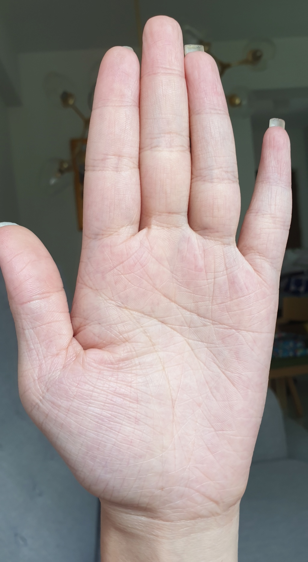Can I get a palm reading please 20190512