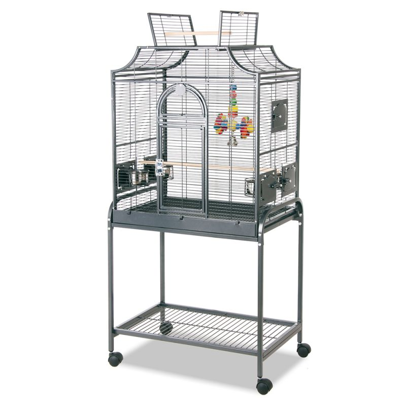 cage adaptée?? 20262_10