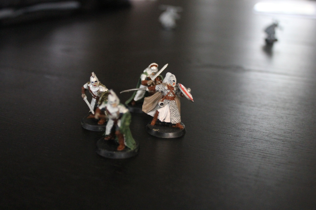 [Les combattants du Gouffre] Erkenbrand et Gardes Royaux Img_9422