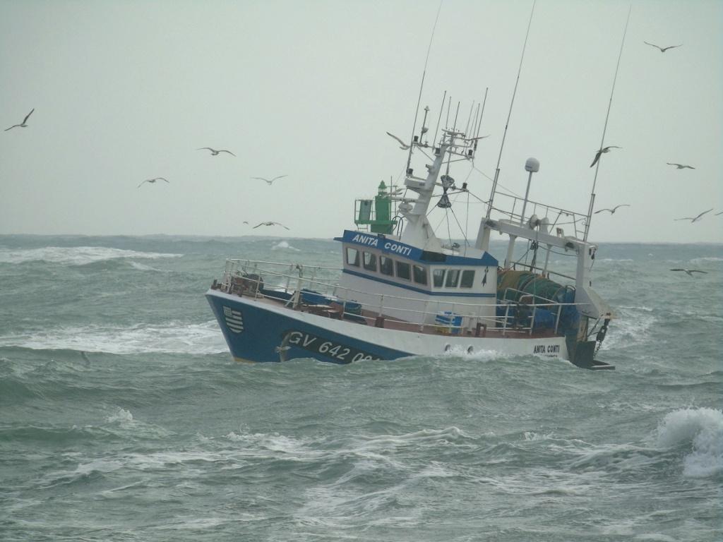 [VIE DES PORTS] Quelques bateaux de pêche (sur nos côtes Françaises) - Page 4 Anita_10