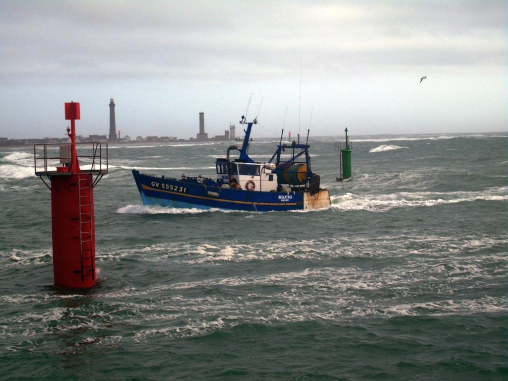 [VIE DES PORTS] Quelques bateaux de pêche (sur nos côtes Françaises) - Page 4 Bellat10