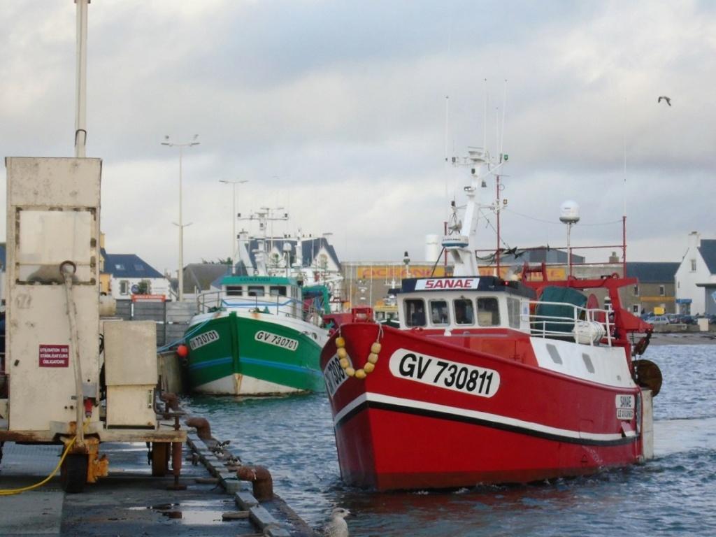 [VIE DES PORTS] Quelques bateaux de pêche (sur nos côtes Françaises) - Page 9 Dsc04714
