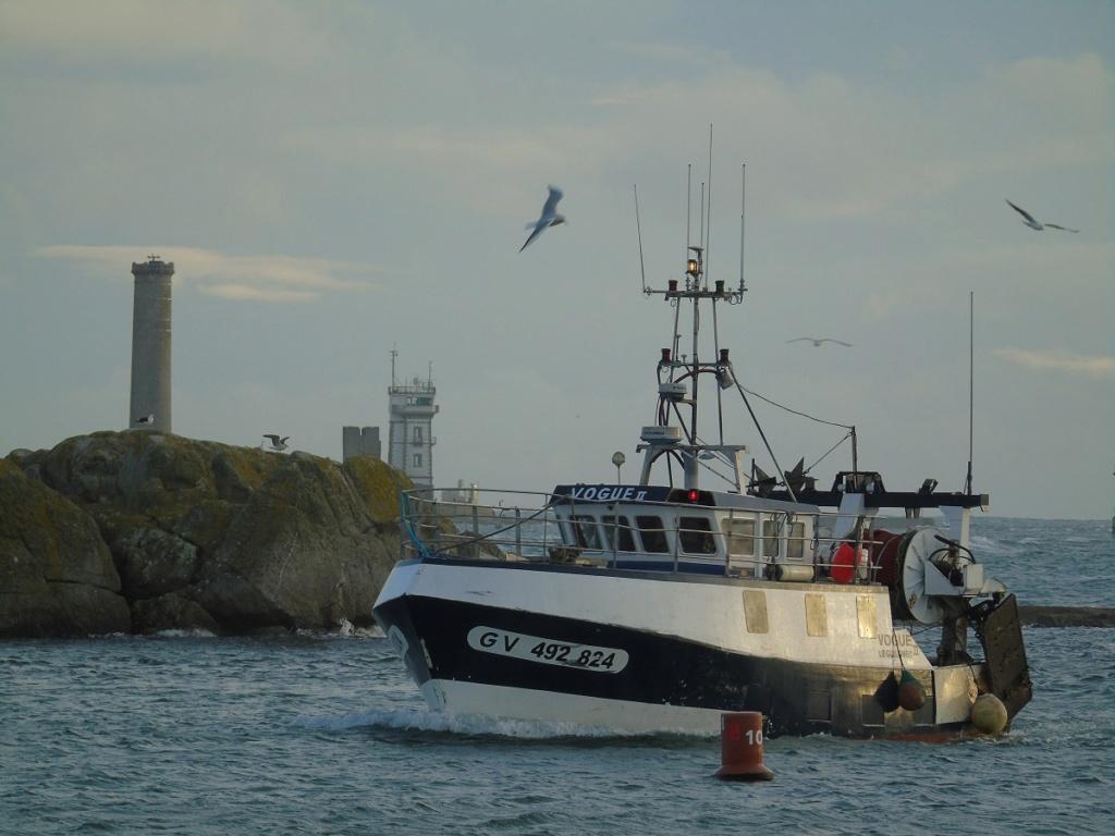[VIE DES PORTS] Quelques bateaux de pêche (sur nos côtes Françaises) - Page 9 Dsc04716