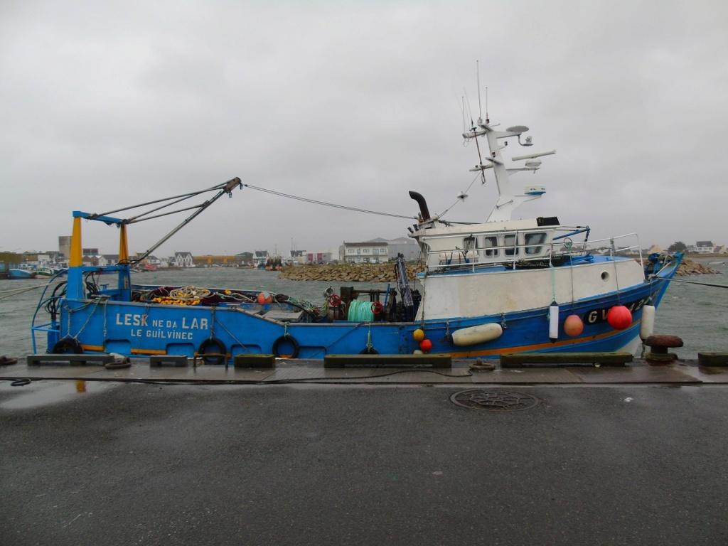 [VIE DES PORTS] Quelques bateaux de pêche (sur nos côtes Françaises) - Page 2 Dsc05219