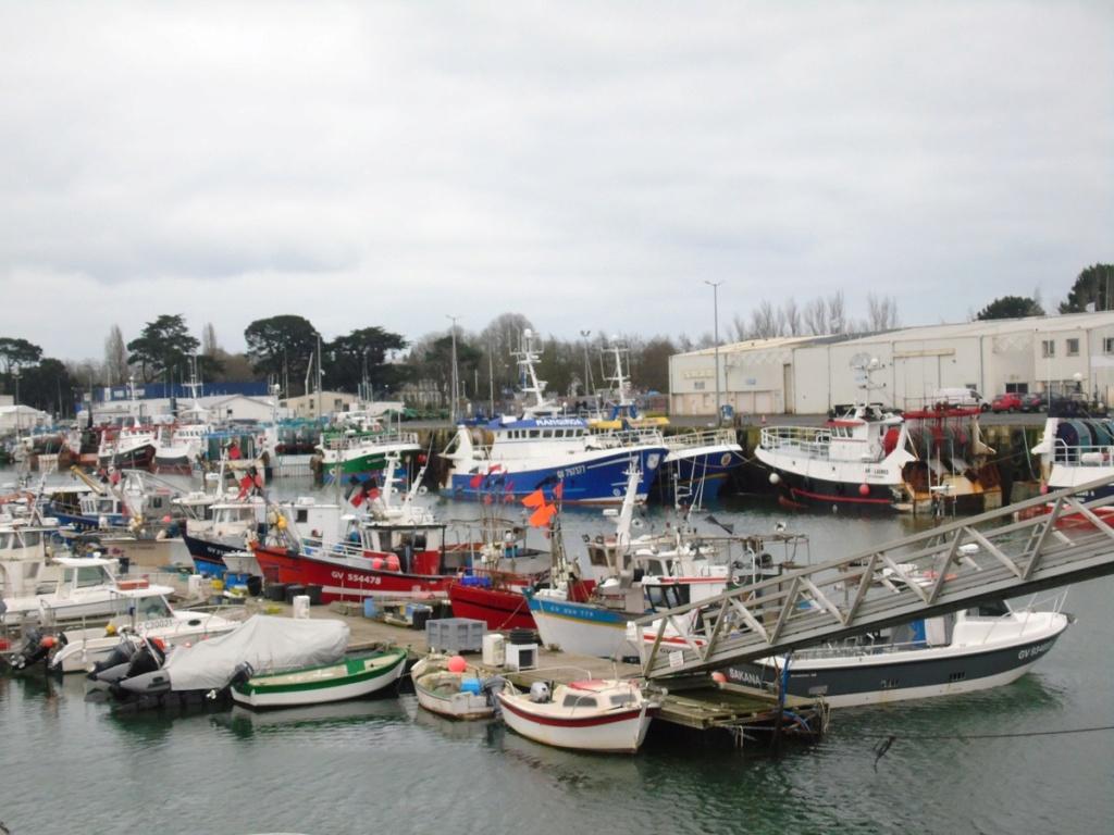 [VIE DES PORTS] Quelques bateaux de pêche (sur nos côtes Françaises) - Page 3 Dsc05813