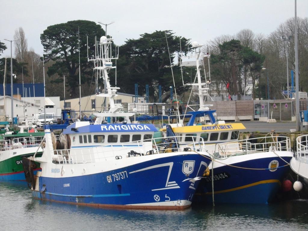 [VIE DES PORTS] Quelques bateaux de pêche (sur nos côtes Françaises) - Page 3 Dsc05814