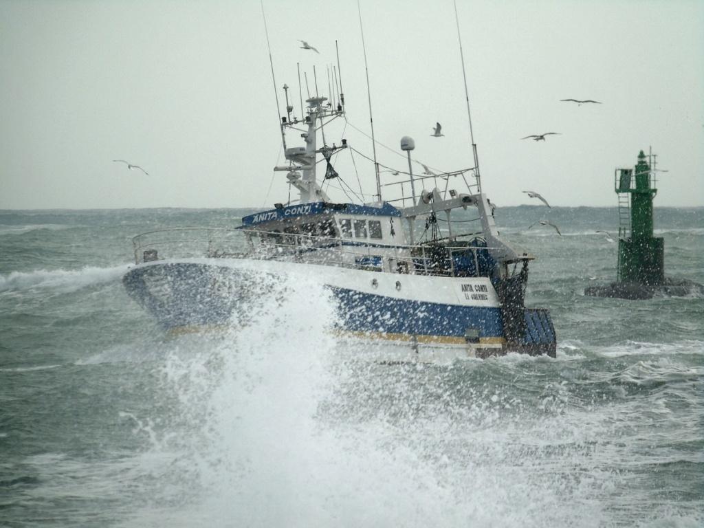 [VIE DES PORTS] Quelques bateaux de pêche (sur nos côtes Françaises) - Page 4 Dsc08314