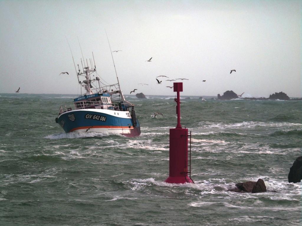 [VIE DES PORTS] Quelques bateaux de pêche (sur nos côtes Françaises) - Page 4 Dsc08315