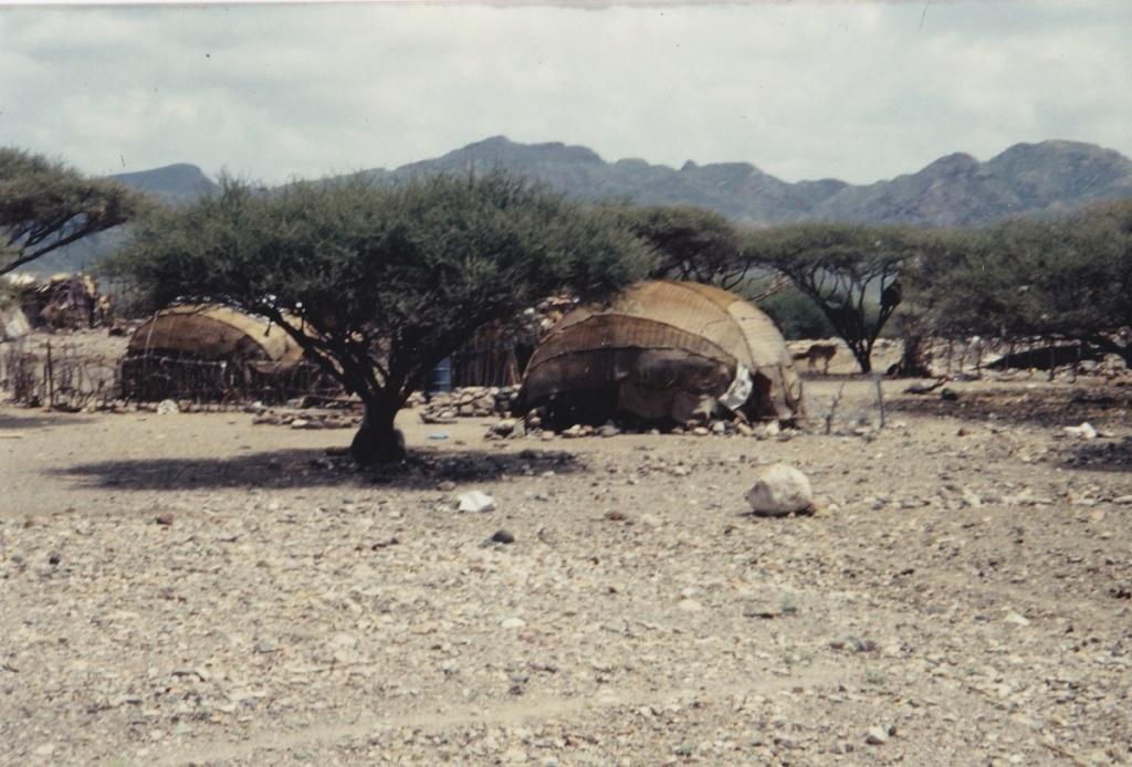 [Campagne] DJIBOUTI - TOME 1 - Page 18 Img_2029