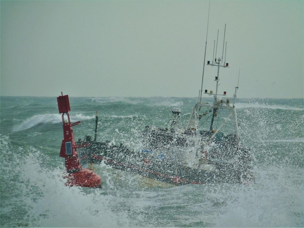 [VIE DES PORTS] Quelques bateaux de pêche (sur nos côtes Françaises) - Page 8 Pzoche10