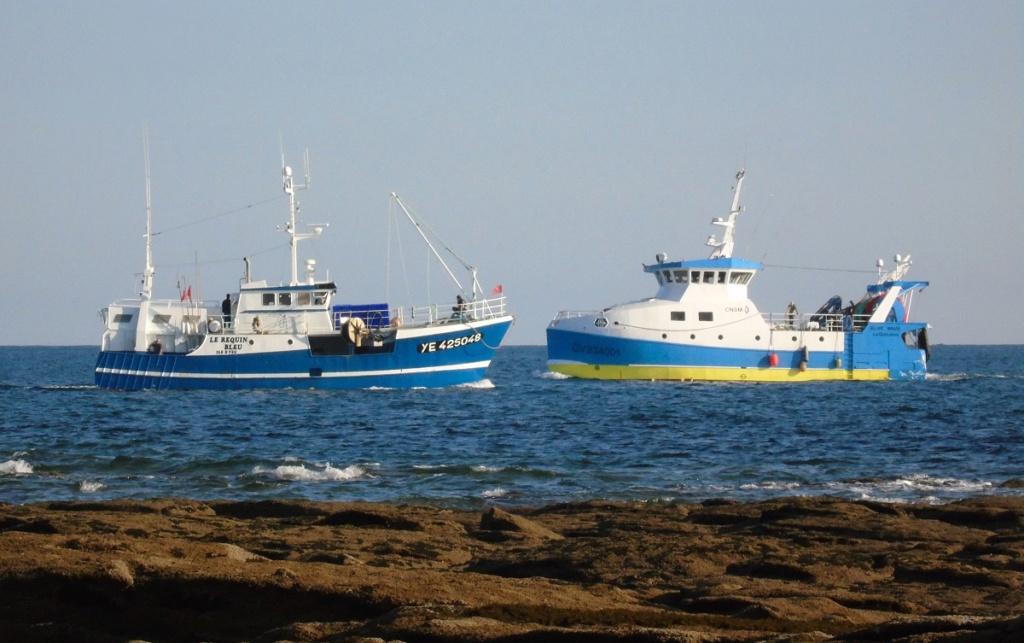 [VIE DES PORTS] Quelques bateaux de pêche (sur nos côtes Françaises) - Page 13 Zgv110