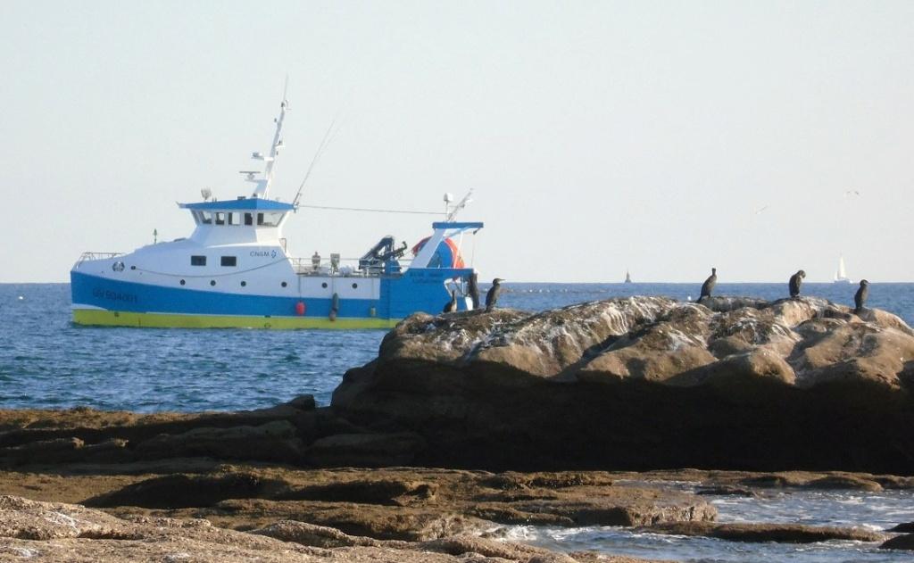 [VIE DES PORTS] Quelques bateaux de pêche (sur nos côtes Françaises) - Page 13 Zgv311