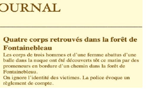 w6496   34 Illustration Brase d'Anjou 310