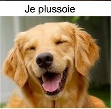 je l'ai lu à mon chien Illustration pour partie extraites de l'image de Brase d'Anjou Clipbo15