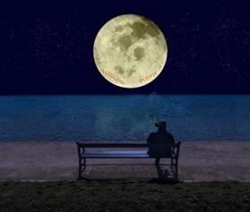 J'ai acheté la lune!. Illustration par Brase d'Anjou Lune1010