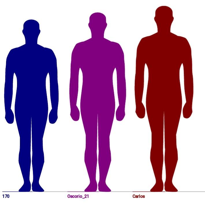 ¿Cuál creéis que es la altura ideal de un hombre? - Página 14 20200710