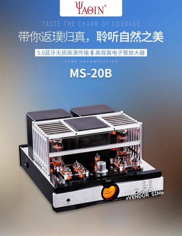 Yaqin MS-20B Hi-End Vacuum Tube Amplifier 119