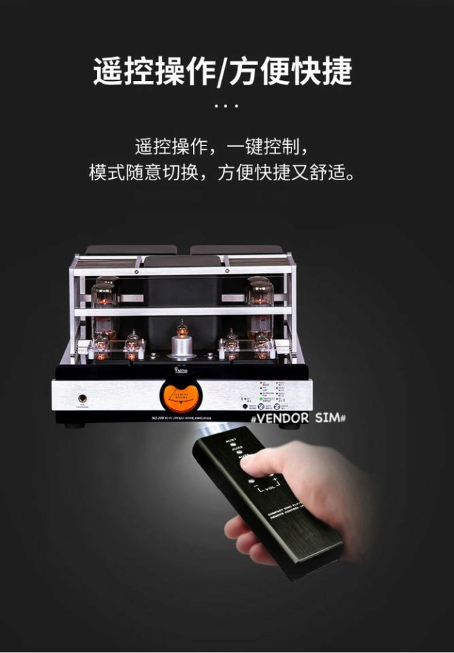 Yaqin MS-20B Hi-End Vacuum Tube Amplifier 319