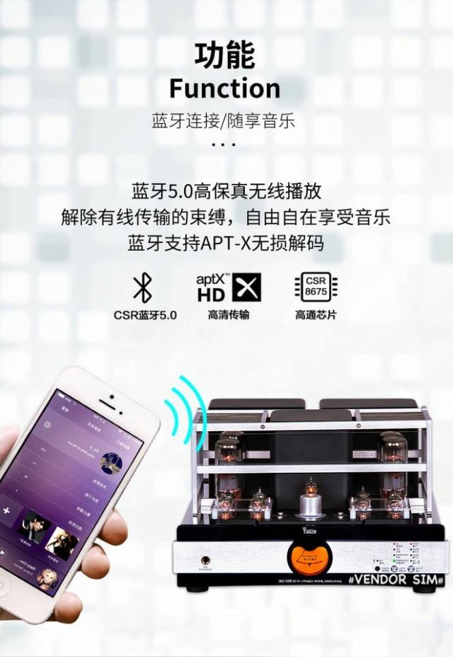 Yaqin MS-20B Hi-End Vacuum Tube Amplifier 419