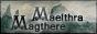 Liste des partenaires Maema810