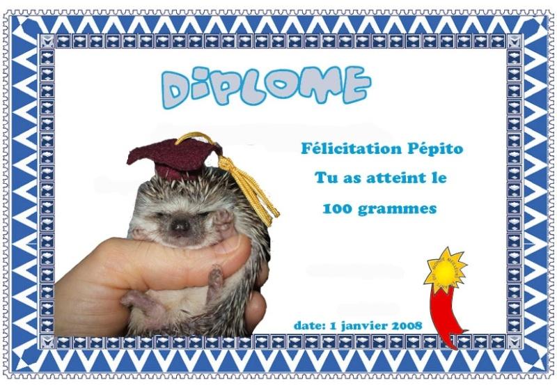 Pépito ! - Page 2 Diplom10