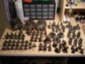 [Skaven 40K] Gang de Morrslieb - Page 5 Dscn1516