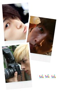 Staff du forum Lee_ch10