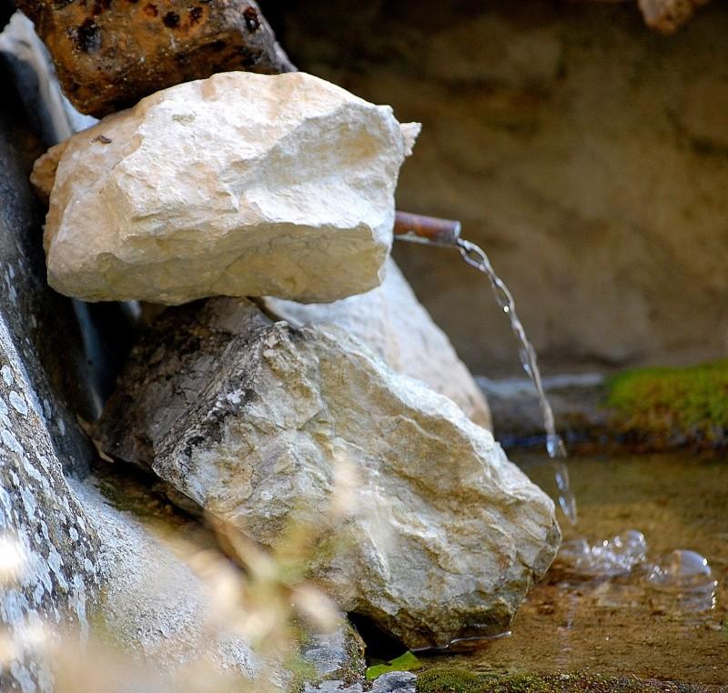 a la terre! a l'eau aux champs Dsc_8718