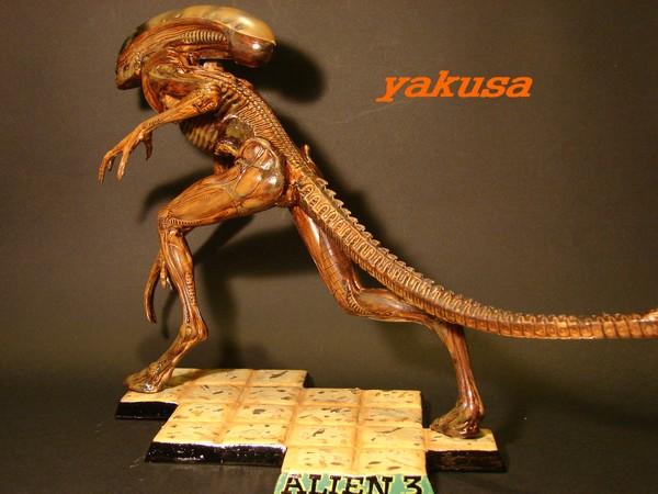 alien halcyon 1/9 by yakusa Dsc00610