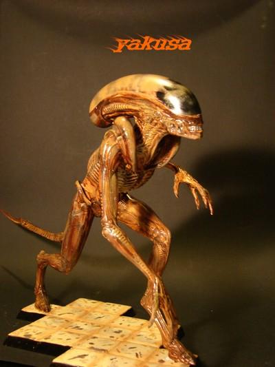 alien halcyon 1/9 by yakusa Dsc00613