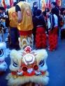Le spectacle est dans la rue : fête du Têt Rencon14