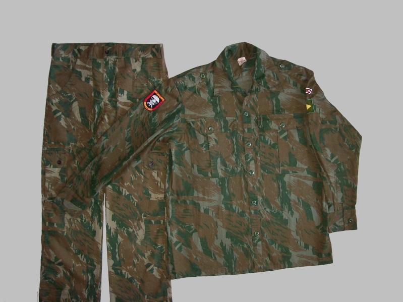 Brazilian Military Insignia 100_5618