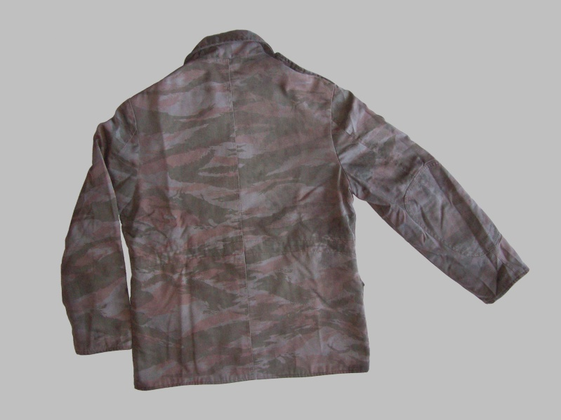 lizard pattern 100_5823