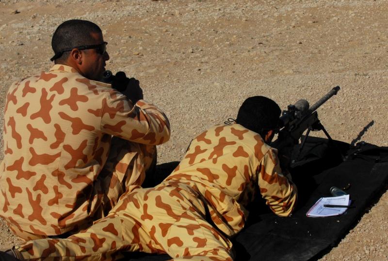 another kuwait camouflage Koweit15