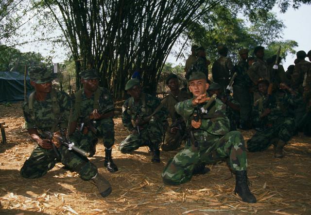 camouflage Zaare-10