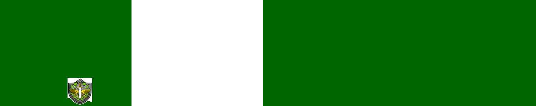 000000 - Design de footer de um tópico Bsmdmg10
