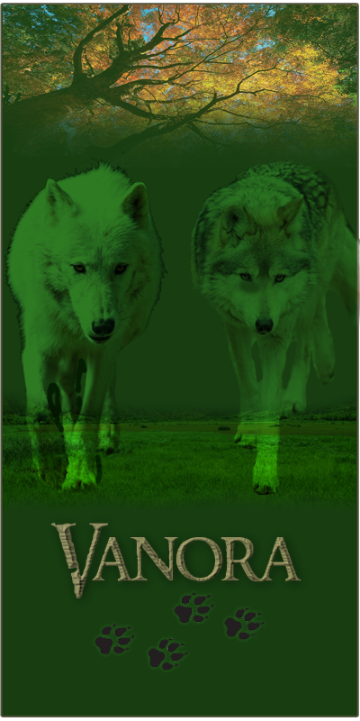 Wolf Banner Scre1223