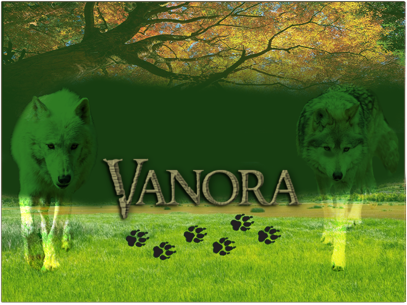 Wolf Banner Scre1227