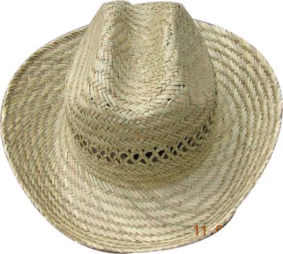 Fashion wan's grass hats Blw08012