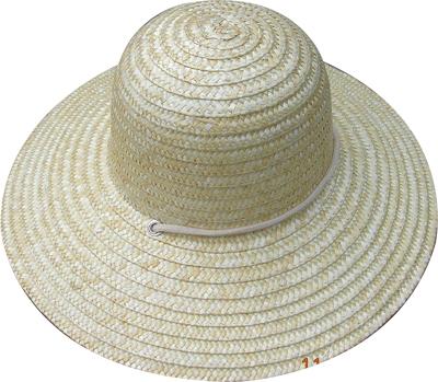 Fashion wan's grass hats Blw08016