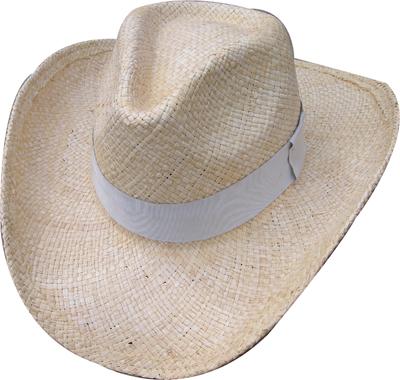 Fashion wan's grass hats Blw08018