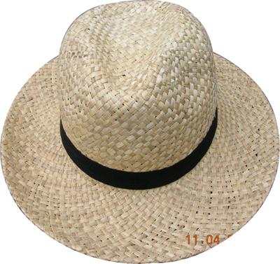 Fashion wan's grass hats Blw08019