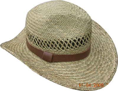 Fashion wan's grass hats Blw08021