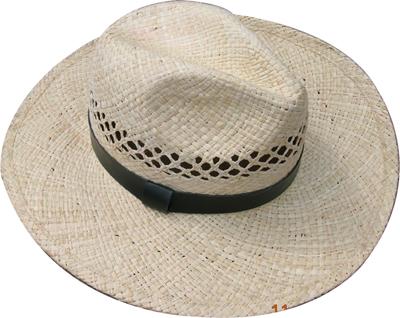 Fashion wan's grass hats Blw08022