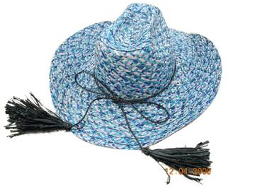 Fashion Men's Hats Blw08038