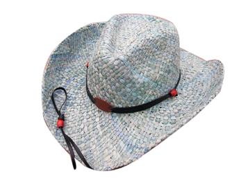 Fashion Men's Hats Blw08039