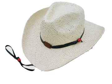 Fashion Men's Hats Blw08040