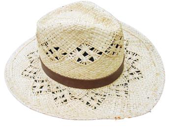 Fashion Men's Hats Blw08042