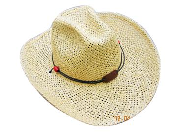 Fashion Men's Hats Blw08043